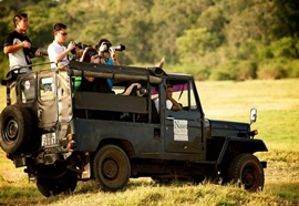 Wildlife Jeep Safari
